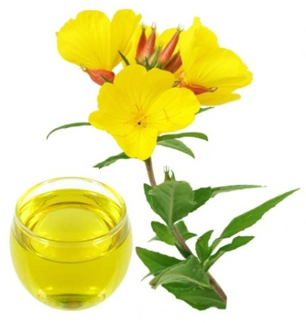 Beauty Benefits Of Evening Primrose Oil