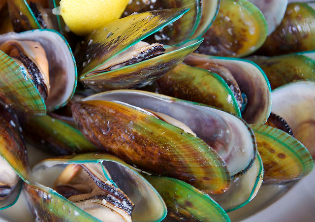 Green lipped mussel new zealand